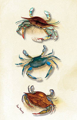 Three Blue Crabs Poster by Anne Beverley-Stamps