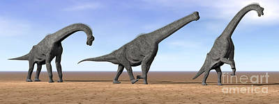 Three Brachiosaurus Dinosaurs Standing Poster by Elena Duvernay