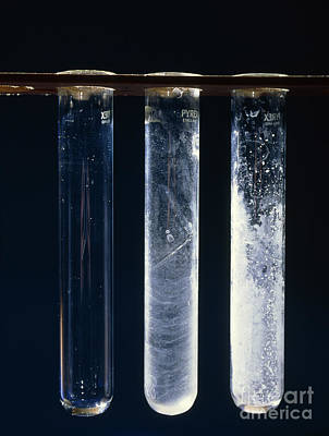 Three Grades Of Water Hardness Poster by Andrew Lambert Photography