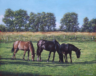 Three Horses In Field Poster