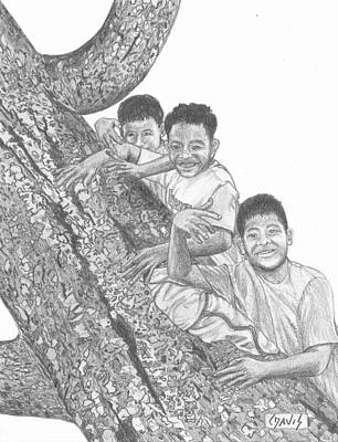 Three In A Tree Poster by Lew Davis