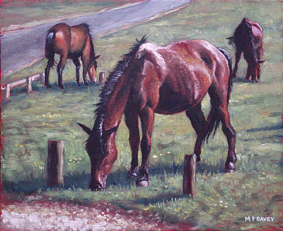 Three New Forest Horses On Grass Poster by Martin Davey