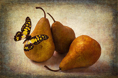 Three Pears And Butterfly Poster by Garry Gay