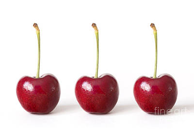 Three Red Cherries Against A White Background Poster by Natalie Kinnear
