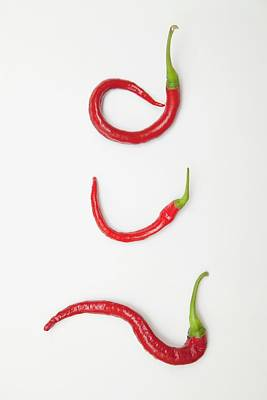 Three Red Jalapeno Peppers Curled Poster by John Short