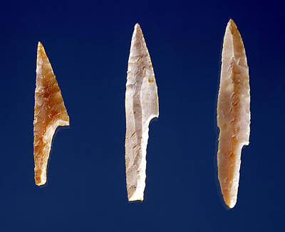 Three Serrated Points, From Volgu, Solutrean Period, 20000-15000 Bc Flint Poster by Prehistoric