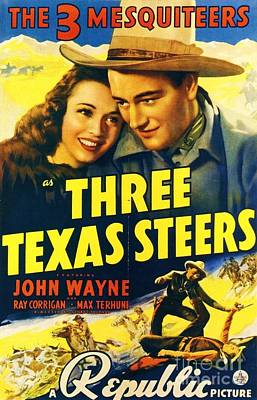 Three Texas Steers Poster by Pg Reproductions
