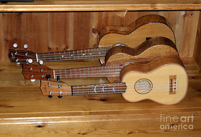 Three Ukeleles Poster by Rod Jones