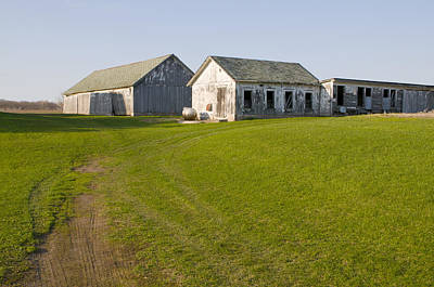 Three Weathered Farm Buildings Poster