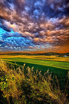 Through The Valley Poster by Phil Koch