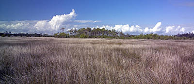 Poster featuring the photograph Tidal Marsh On Roanoke Island by Greg Reed