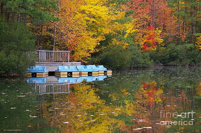 Tidewater Autumn Poster by Tannis  Baldwin