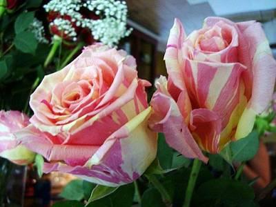 Tie Dye Roses Poster