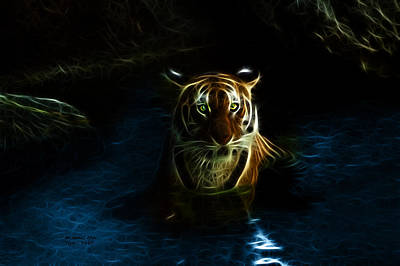 Tiger 3860 - F Poster by James Ahn