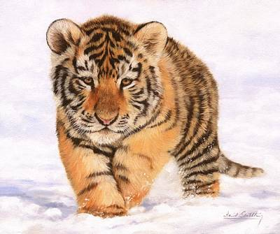 Tiger Cub In Snow Painting Poster by David Stribbling