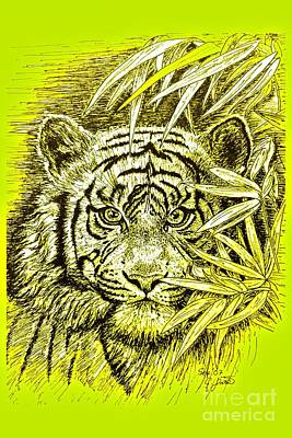 Tiger - King Of The Jungle Poster