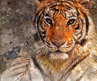 Tiger Life Poster by Yury Malkov