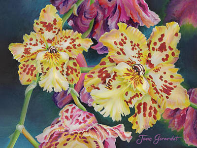 Tiger Orchid Poster