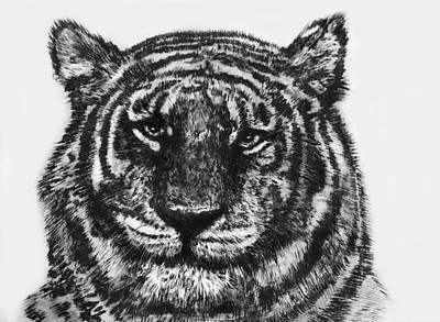 Poster featuring the painting Tiger by Shabnam Nassir