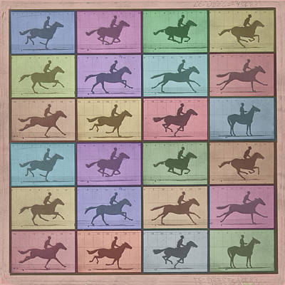 Time Lapse Motion Study Horse Color Poster by Tony Rubino