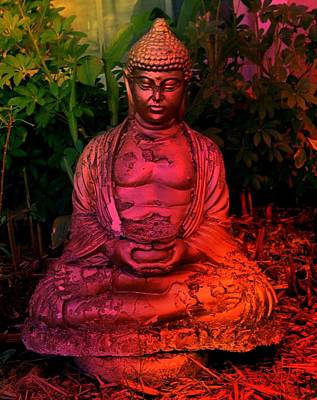 Timeless Buddha Poster