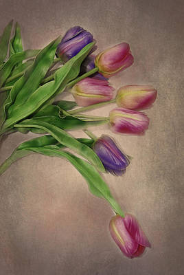 Tip Toe Thru The Tulips Poster by Mary Timman