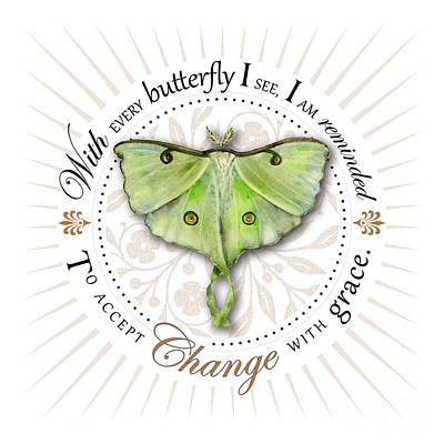 To Accept Change With Grace Poster by Amy Kirkpatrick