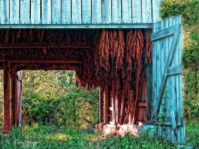 Tobacco Barn - Featured In Old Building And Ruins Group Poster