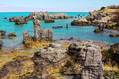 Tobacco Beach In Bermuda Poster