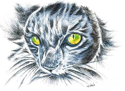 Toby Green Eyed Cat Poster by Teresa White
