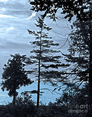 Toft Point Blue Poster by Jim Rossol