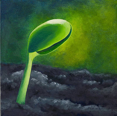 Tofu Soybean Seedling Poster by Garry McMichael