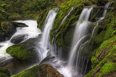 Tokul Creek Cascades Poster by Mark Kiver