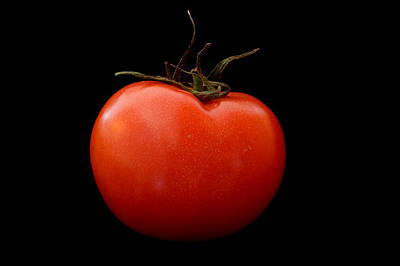 Tomato On Black Poster by Jeremy Voisey
