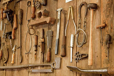 Tools Mounted On Wooden Wall Poster