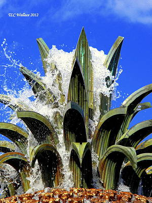 Top Of The Pineapple Fountain Poster by Tammy Wallace