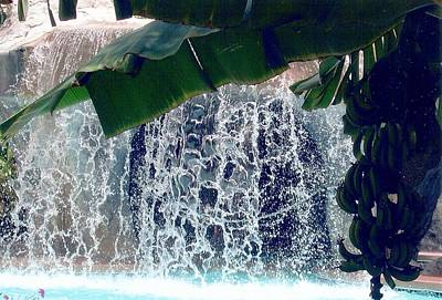 Poster featuring the photograph Topical Water Fall by Judy Palkimas