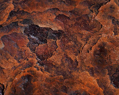 Topography Of Rust Poster by Rona Black
