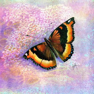 Tortoiseshell Butterfly Poster by Marilyn Smith