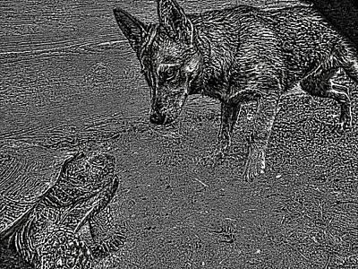 Tortuga Duel Poster by Robert Rhoads