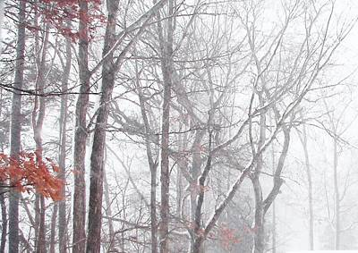 Touch Of Fall In Winter Fog Poster