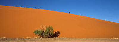 Tourists Climbing Up A Sand Dune, Dune Poster by Panoramic Images