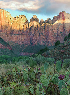 Towers Of The Virgin, Zion National Poster