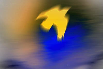 A Yellow Trace Of A Bird Flying Away  Poster by Hilde Widerberg