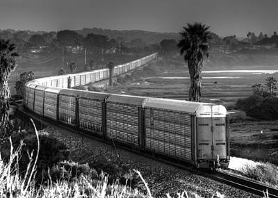 Train At San Elijo Lagoon Poster