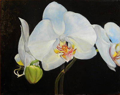 Poster featuring the painting Translucent Orchids by Sandra Nardone