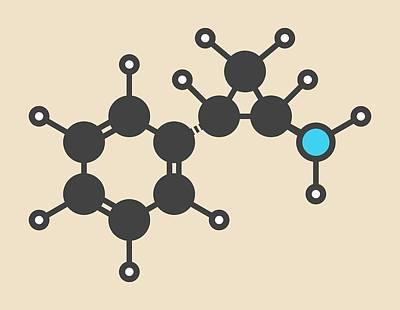 Tranylcypromine Drug Molecule Poster