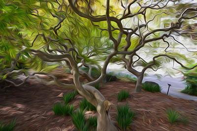 Tree At Norfolk Botanical Garden Poster by Lanjee Chee