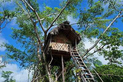 Tree House In A Banyan Tree Poster by Michael Runkel