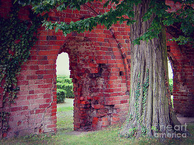 Poster featuring the photograph Tree In An Old Cloister by Art Photography